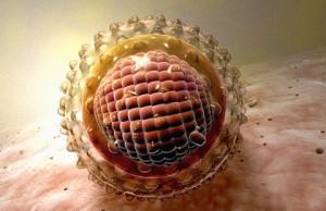 Самоизлечение от гепатита в